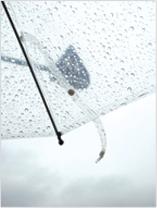 ビニール傘の生地
