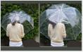 ビニール傘の大きさ比較